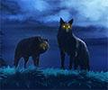 דם זאב: רצי הצללים